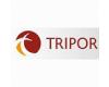 TRIPOR Sklo - Porcelán Klára