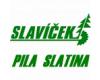 Jan SLAVÍČEK - PILA SLATINA