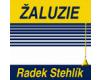 Radek Stehlík