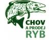 Rybářství na Bylance, Kutná Hora