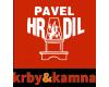 Pavel Hradil