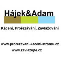 Zavlažovací systémy, kácení stromů – Hájek & Adam