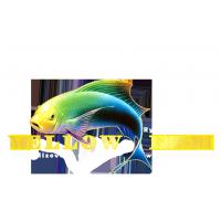 YellowFish - Špecialista na feeder