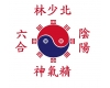Česko-čínská akademie wugong: škola tradičního kung fu Brno
