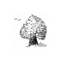 Zahradní architektura a krajinářství – Ing. Věra Hrubá