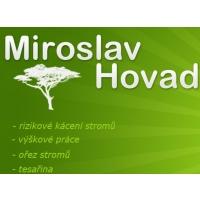 Rizikové kácení stromů a výškové práce – Miroslav Hovad