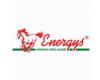 Krmiva pro koně Energys