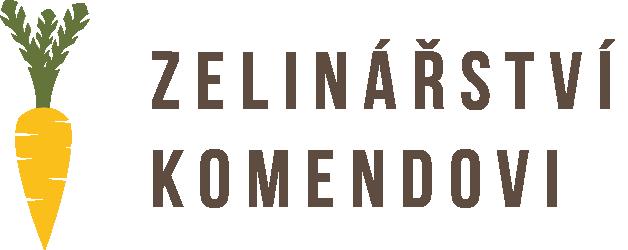 Dagmar Komendová – Bedničková služba