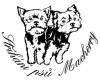 Stříhání psů Macherry