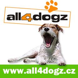 All4dogz