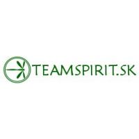 teamspirit.sk
