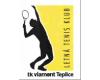 TK Viamont Teplice
