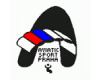 Aviatik Sport Praha