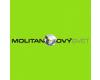 Dynamis - Molitanový svět