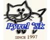 Don Sphynx bezsrstá mačka sfinx- ChS PYREL