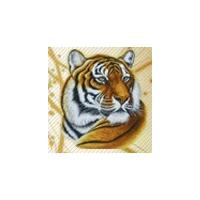 Оздоровительный центр «Желтый тигр»
