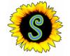Slunečnice - úklidové a sociální služby