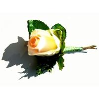 Rozvoz a doručování květin