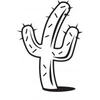 Zastavárna Kaktus
