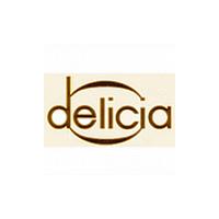 Akordeon servis – Delicia