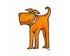 Útulek pro psy - Karlovy Vary