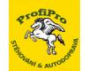 ProfiPro