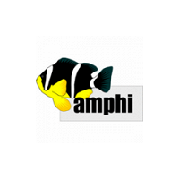 Pavlína Procházková - Amphi
