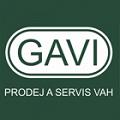 Milan Vítek – GAVI