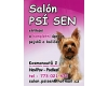 Salon Psí Sen