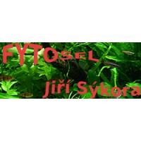 Jiří Sýkora – FYTOSEL