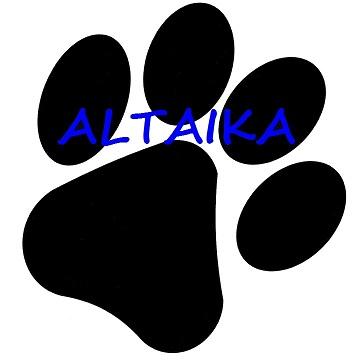 Altaika
