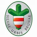 Lesy města Brna, a.s.