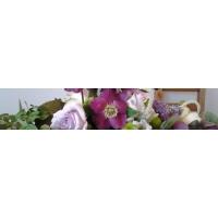 Květiny Palác Fénix