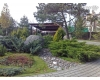 Rekultivace zahrad