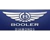 BOOLER TRADE LTD., organizační složka