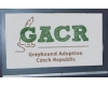 GACR - Greyhound Adoption Czech Republic