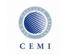 Central European Management Institute - CEMI