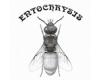 ENTOCHRYSIS